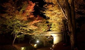 第10回 上田城紅葉まつり 2016年11月3日(木・祝)~6日(日)