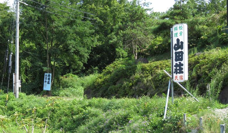mastsutake-yamadasanso