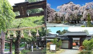 上田市観光タクシーの旅ガイド